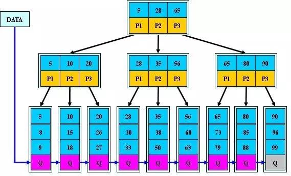 B+树结构